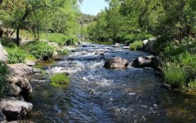 Salvamos ríos