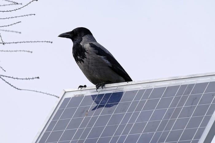 Sistema de energía solar en casa